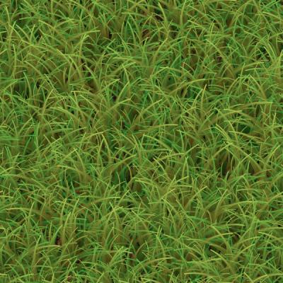 Grass 2.png